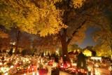 Jak odszukać zmarłych na cmentarzu w Zgorzelcu? O kim pamiętać?