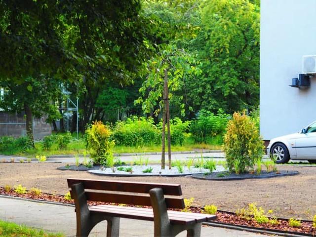 Nowe skwerki i rabatki powstają w Sosnowcu. Ten powstał w ramach Budżetu Obywatelskiego.   Zobacz kolejne zdjęcia. Przesuń zdjęcia w prawo - wciśnij strzałkę lub przycisk NASTĘPNE