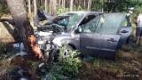 Śmiertelny wypadek na DK11. Nie żyje nastolatek