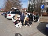 Szkolne Koło Wolontariatu w SP nr 4 w Pruszczu działało mimo pandemii. Wolontariusze świetnie sobie radzili