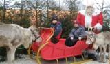 Nowy Targ. Masa atrakcji podczas Targów Bożonarodzeniowych
