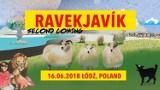 Ravekjavik, czyli impreza poświęcona muzyce elektronicznej w Łodzi