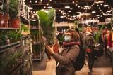 W Zamościu odbędzie się Festiwal Roślin