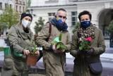 """Mieszkańcy Kalisza przynieśli kwiaty na rynek i stworzyli """"Zieloną nieskończoność"""" ZDJĘCIA"""