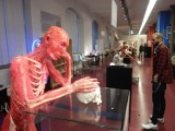 Plastinarium w Guben otworzyło się 14 lat temu. Do dziś gabinet von Hagensa z przetworzonymi zwłokami wzbudza kontrowersje