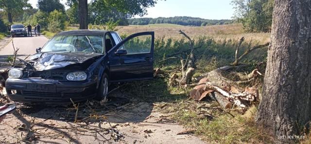 Drzewo spadło na samochód w gminie Rzeczenica