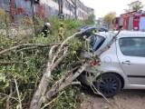 Wichura w Kaliszu i powiecie kaliskim. Prawie 130 interwencji strażaków. ZDJĘCIA