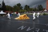 Bicie rekordu Guinnessa w Toruniu. Gigantyczna pasta dla słonia. Robi wrażenie! ZDJĘCIA