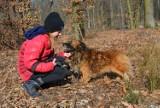 Schronisko dla zwierząt w Skierniewicach. Piękne psy czekają na przyjazny dom ZDJĘCIA