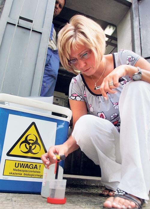 Pracownica lędzińskiego laboratorium pobiera próbki