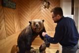 """Zakopane. Wystawę o ochronie przyrody w Willi Koliba stworzyli wedle zasady """"zero waste"""""""