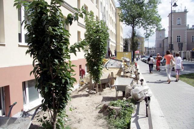 Drzewka wycięto, bo stały na drodze budowanego podjazdu dla osób niepełnosprawnych
