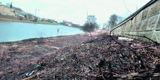 Podpalacze zniszczyli m.in. trawniki na bulwarach wiślanych. Policja ostrzega, że za wypalanie grozi nawet areszt!