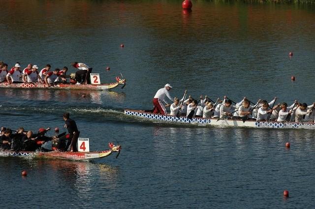 """W sobotę na torze regatowym Malta w Poznaniu po raz czwarty odbędą się mistrzostwa szkół w wyścigach smoczych łodzi  """"Dragony 2012""""."""