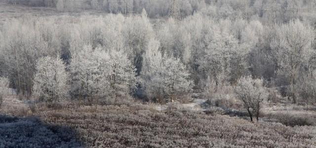 W piątek może jeszcze popadać śnieg. Podobnie w sobotę. Maksymalnie pokrywa śnieżna może wynieść 2 centymetry. W niedzielę i poniedziałek zapowiada się lepsza pogoda, będzie więcej słońca.