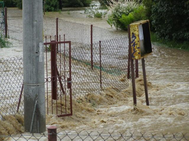 Woda wlewa się na ogródki działkowe przez lukę w obwałowaniach