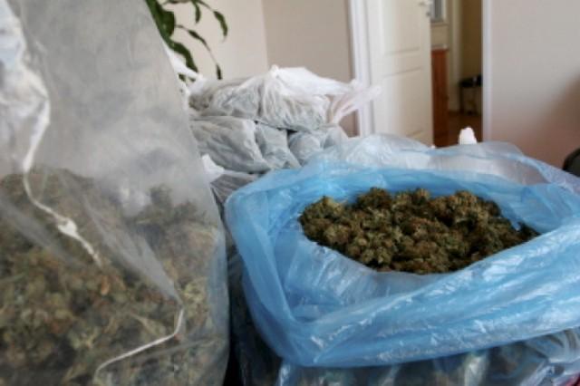 Lubelscy funkcjonariusze zabezpieczyli 4,5 kg marihuany