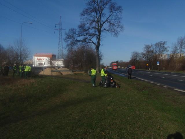 Sprzątanie terenów wzdłuż ul. Lechickiej