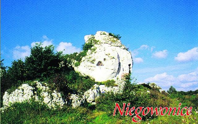 Na Jurze są głazy duże. Tak przedstawia się panorama Niegowonic. W Suliszowicach skała jest kręcona i przypomina loda z automatu. W Łutowcu też skała i zielona trawka