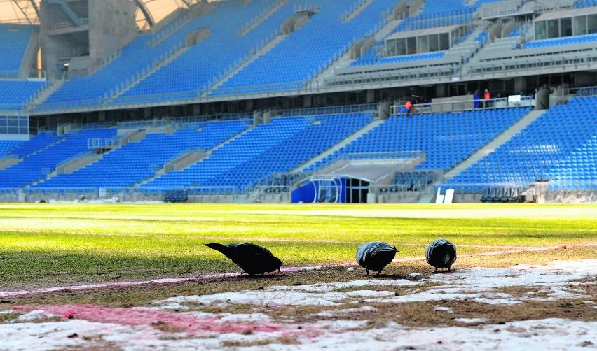 Odpowiedni dla stadionu tytuł to raczej kompromitacja roku -...