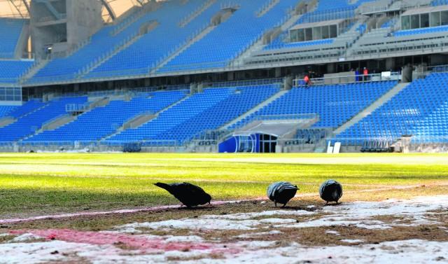 Odpowiedni dla stadionu tytuł to raczej kompromitacja roku - komentuje poznański radny
