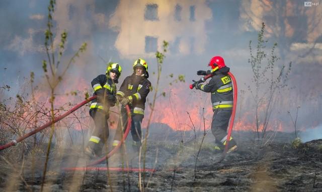 Akcja straży pożarnej na ul. Turkusowej. Pożar traw