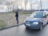 Tydzień z życia Straży Miejskiej w Świdnicy: libacja na rynku, uszkodzony słupek i siwy dym na Bystrzyckiej