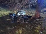Gmina Rusiec. W nocy samochód uderzył w drzewo