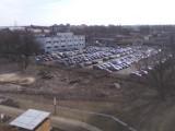 Kraków. Wycinek jest tyle, że miastu ciężko je liczyć