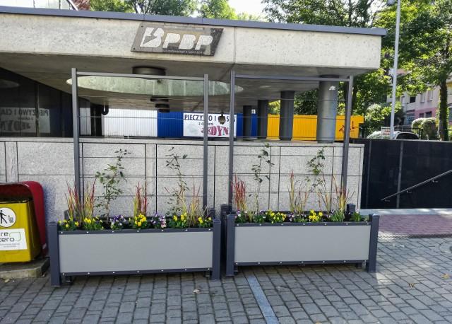 Zielony przystanek powstał przy ulicy Piastowskiej w Bielsku-Białej