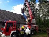 Porywisty wiatr złamal drzewo. Strażacy zabezpieczali uszkodzony dach