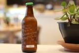 Kombucha – jakie właściwości ma grzyb herbaciany? Przepis na kombuchę oraz jej zdrowotne i pielęgnacyjne zastosowanie!