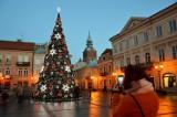 Miejska choinka w Piotrkowie już świeci. Pozostałe dekoracje rozbłysną do 18 grudnia [ZDJĘCIA]