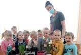 Powitanie wiosny w staszowskim przedszkolu numer 3. Dzieciaki uczyły się sadzić roślinki (ZDJĘCIA)