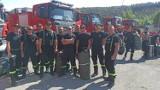 Misja Grecja 2021. Pleszewscy strażacy w greckim piekle. Jak przebiegała walka z żywiołem?