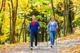 Na jaką aktywność postawić jesienią?