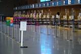 Lotnisko Ławica powoli odbudowuje siatkę połączeń. Koronawirus przyniósł ogromne straty