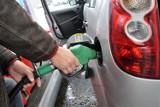 Ceny paliw w Zielonej Górze rosną jak na drożdżach. Lada dzień przekroczą 5 zł? Sprawdź, ile zapłacić za tankowanie w mieście