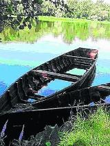 Konkurs Rzeka Roku 2014. Klub Gaja szuka rzek bliskich sercom