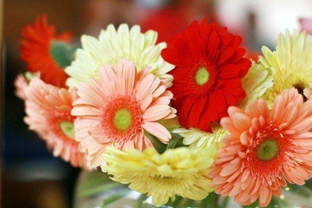 Kwiatowy Savoir Vivre Czyli O Jakich Zasadach Pamietac Wreczajac Kwiaty Dolnoslaskie Nasze Miasto