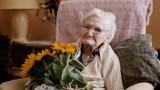 Superstulatka z Gliwic skończyła 115 lat. Przeżyła dwie wojny i kilka epidemii. Tekla Juniewicz to ewenement na skalę światową