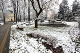 Zima w centrum Jarosławia [ZDJĘCIA]