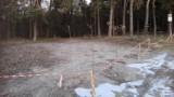 Chełm. Leśnicy mają bat na nielegalnie parkujących