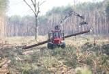 Wycinka drzew zakończona. Wkrótce rusza budowa południowej obwodnicy. Ile drewna pozyskano? - zdjęcia