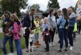 Spacer z PSYjacielem w Schronisku dla Bezdomnych Zwierząt w Skierniewicach [ZDJĘCIA]