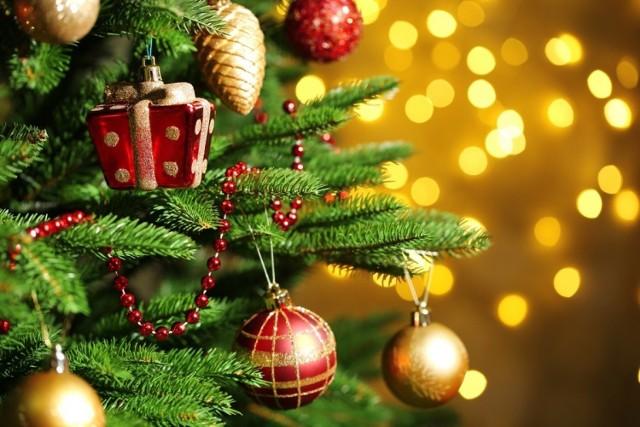 Niedługo Boże Narodzenie. Jaką choinkę wybrać i jak ją ozdobić? Czy musimy szykować się na duże wydatki - jakie są ceny? Sprawdź!  Przejdź dalej --->