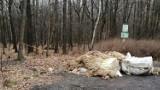 Owcze skóry i fragmenty wnętrzności na parkingu przy lesie w Rudzie Śląskiej. Sprawą zajmie się policja