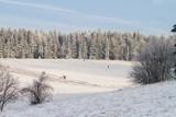 Ministerstwo Edukacji Narodowej wydało rekomendację dotyczącą ferii zimowych 2021. Jest zielone światło dla półkolonii