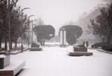Zima w Szczecinie ciągle w ataku, kłopoty z komunikacją miejską. Ciężarówki utknęły na A6