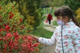 Ogród Botaniczny UMCS jest już otwarty. Jak wygląda zwiedzanie podczas pandemii?
